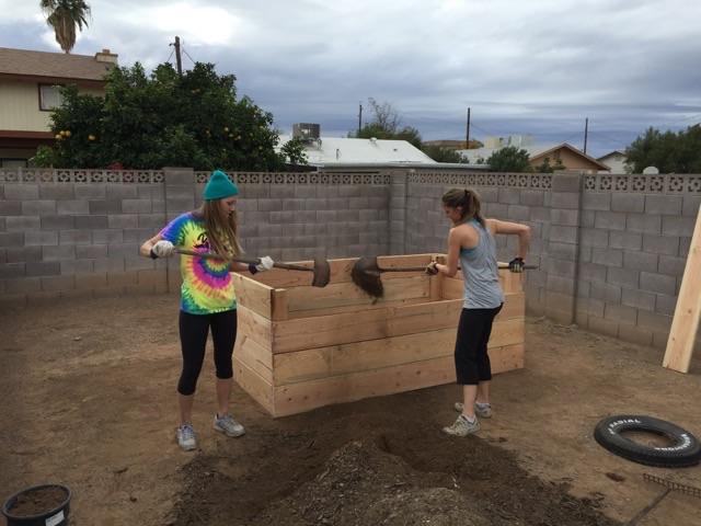 volunteers and gardening